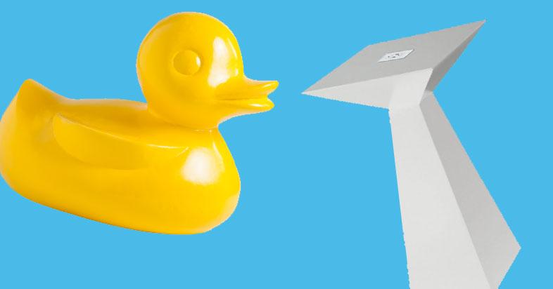 fwr-duck